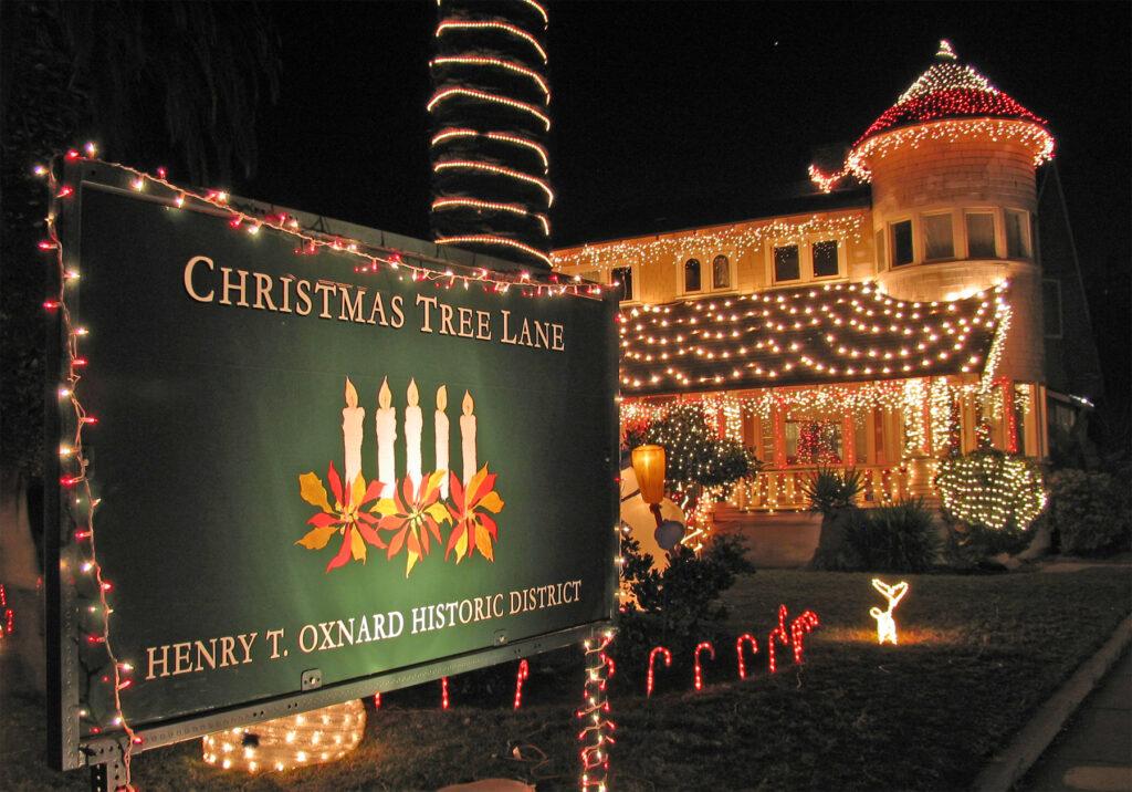 Christmas Tree Lane